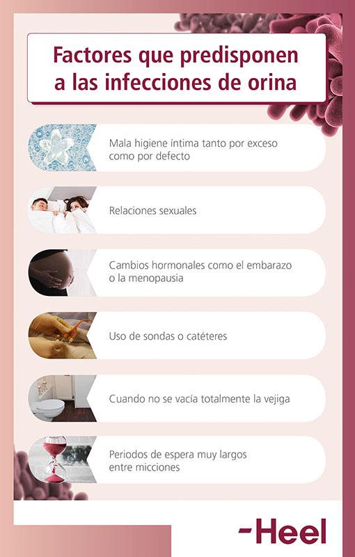 Síntomas de infección de orina: mujeres y niños - HeelProbiotics - HeelEspaña