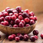Tratamiento de la cistitis con arándanos rojos - HeelProbiotics - HeelEspaña