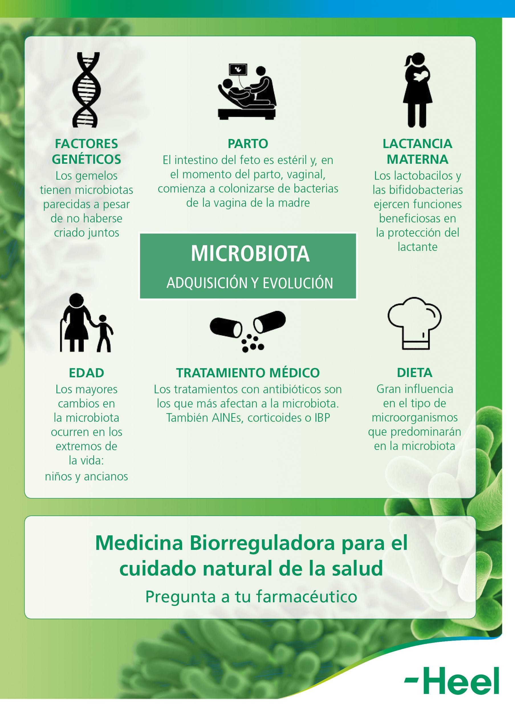microbiota-adquisicion-evolucion