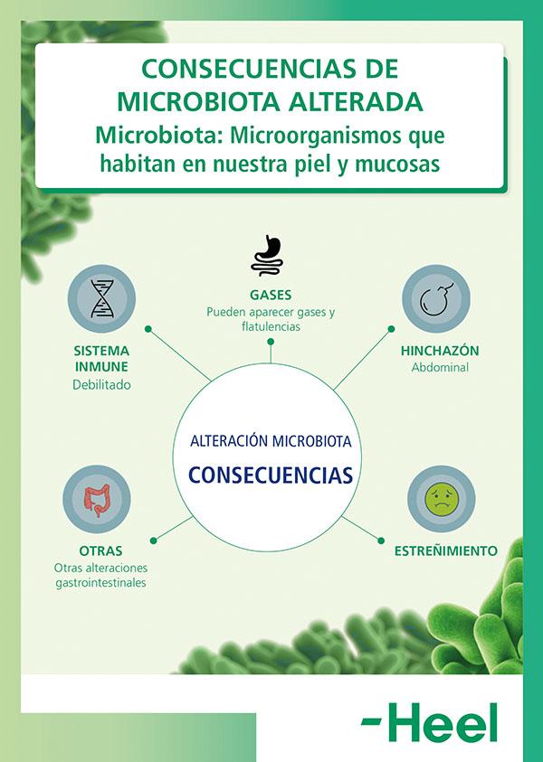 ¿Qué me pasa si tengo la microbiota alterada? - HeelProbiotics - HeelEspaña