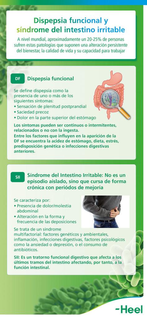 Diferencias entre dispepsia funcional e intestino irritable