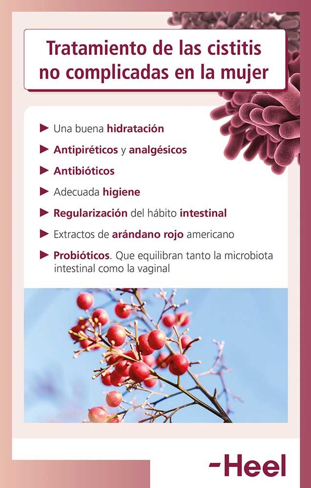 Tratamiento de las cistitis no complicadas - HeelProbiotics - HeelEspaña