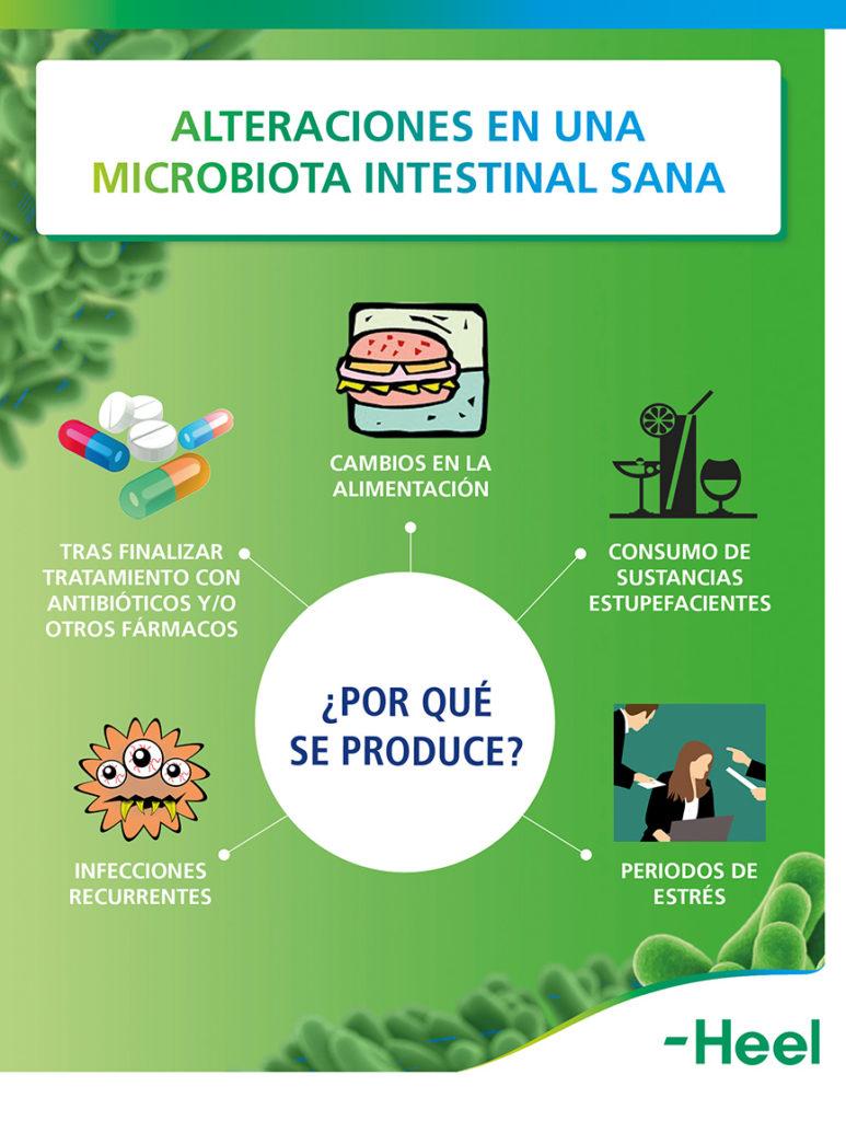Por qué se produce la alteraciones de la microbiota intestinal sana