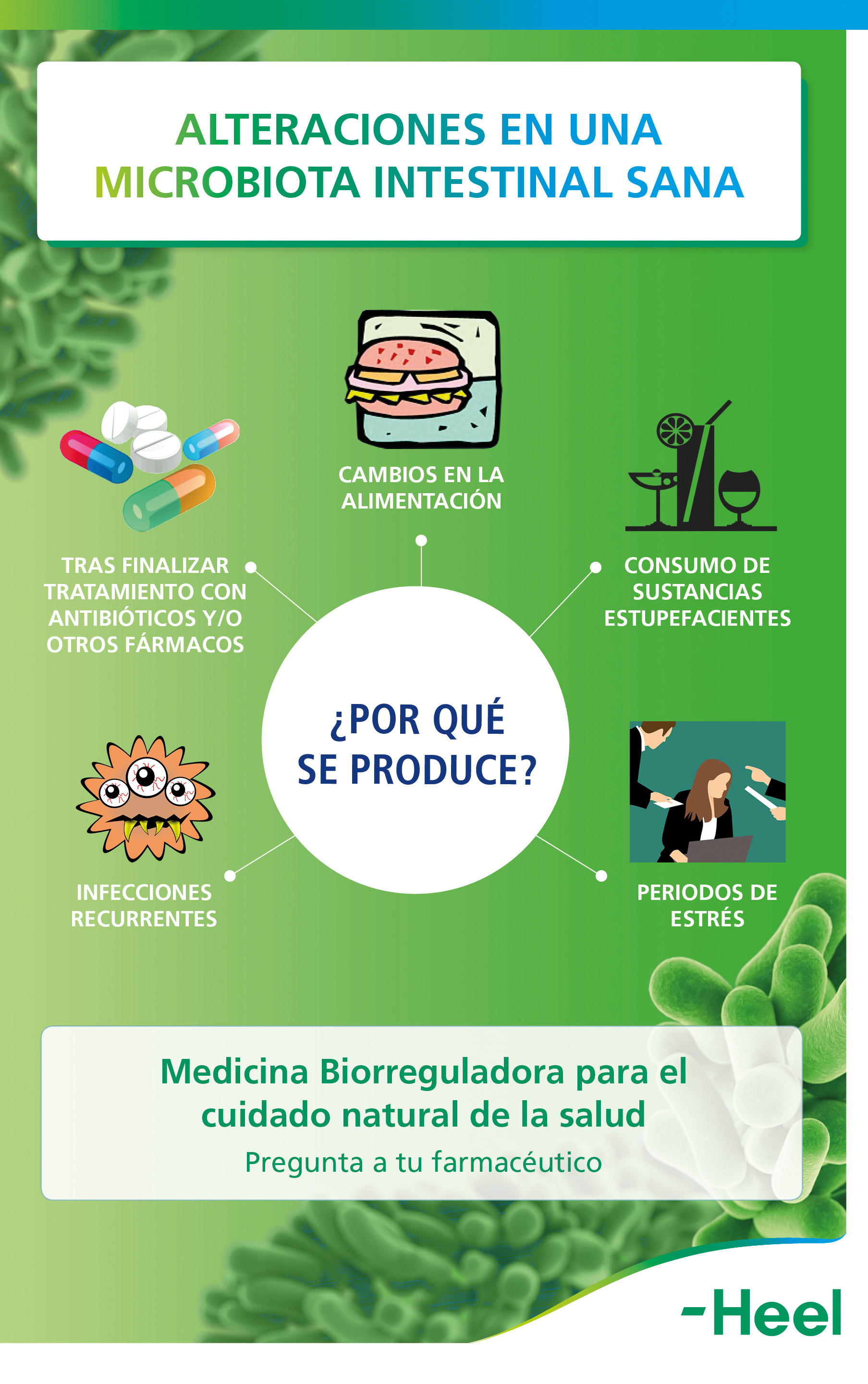 Importancia de la microbiota intestinal sana - HeelProbiotics - Heel España