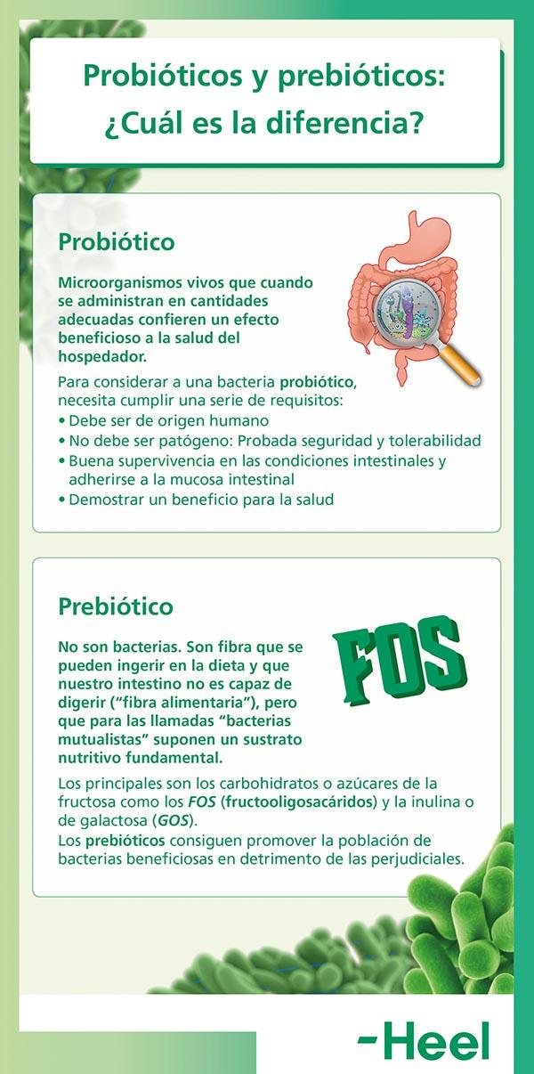 ¿Sabes cuál es la diferencia entre probióticos y prebióticos? - HeelProbiotics - HeelEspaña