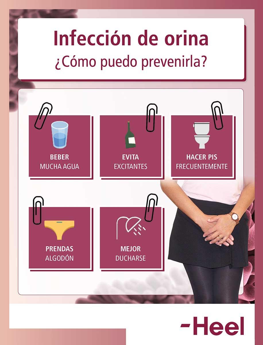Consejos para prevenir la cistitis - HeelProbiotics - HeelEspaña