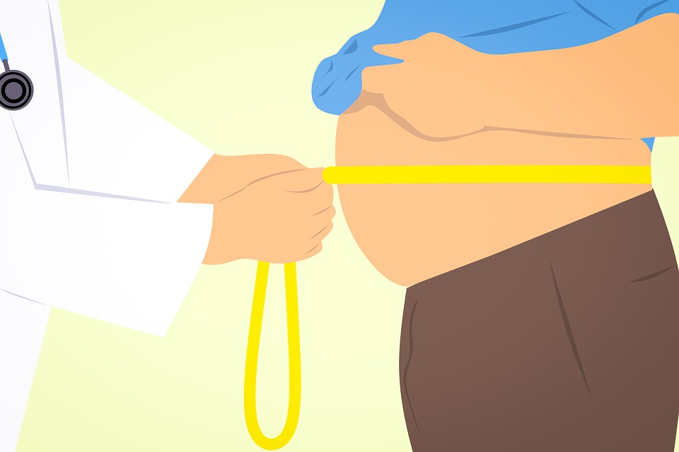 Consejos para bajar la grasa abdominal - HeelProbiotics - HeelEspaña