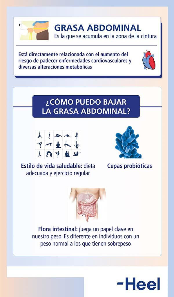 Consejos para reducir la grasa abdominal - HeelProbiotics - HeelEspaña