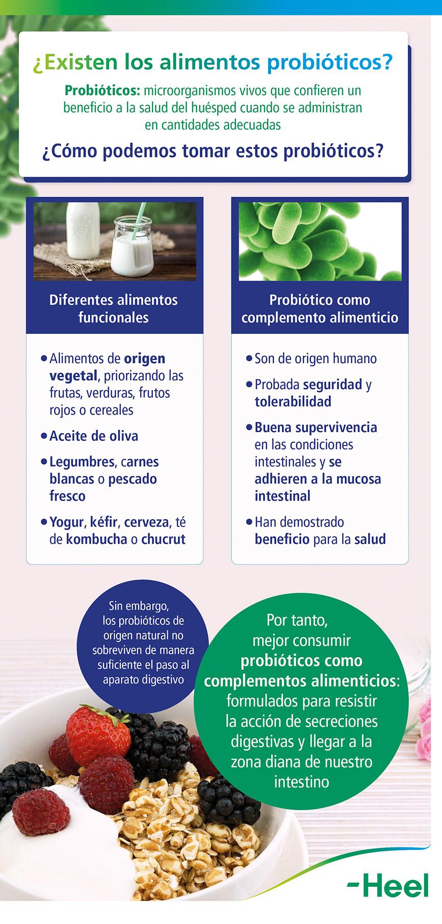 ¿Ingerimos alimentos probióticos? - HeelProbiotics - HeelEspaña