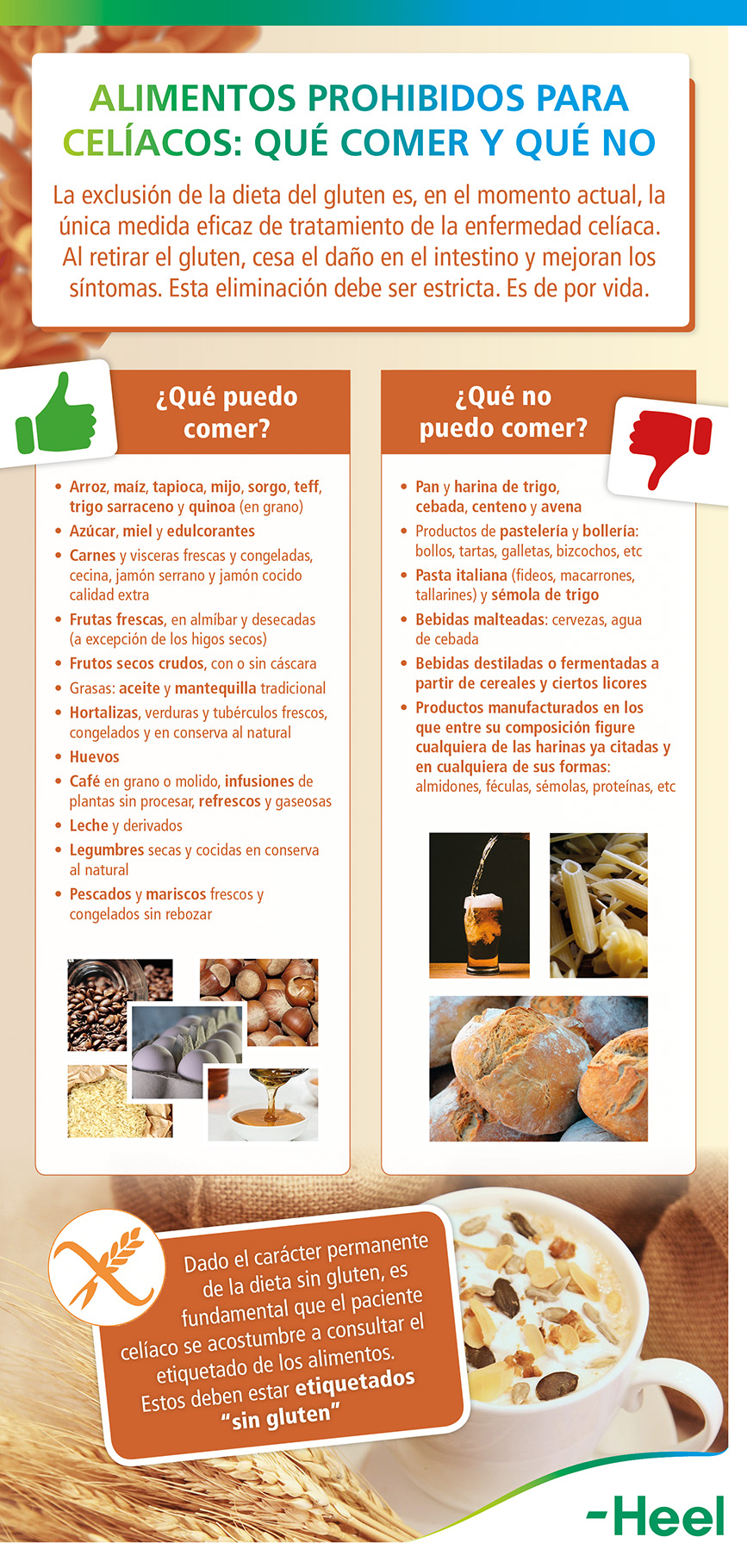 Alimentos - prohibidos - celiacos - HeelProbiotics - HeelEspana