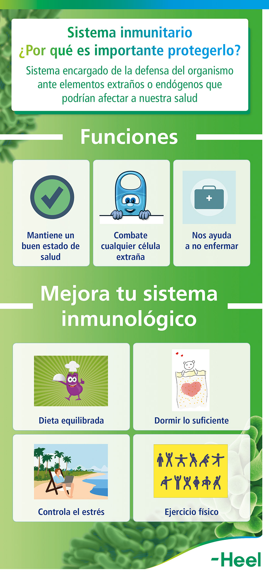 ¿Por qué es importante proteger nuestro sistema inmunitario? - HeelProbiotics - HeelEspaña