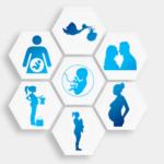 Formación de la microbiota - HeelEspaña - HeelProbiotics