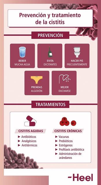 Tratamiento de la cistitis. Síntomas y prevención - HeelProbiotics – HeelEspaña