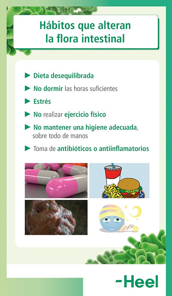 Flora intestinal alterada: causas - HeelProbiotics - HeelEspaña