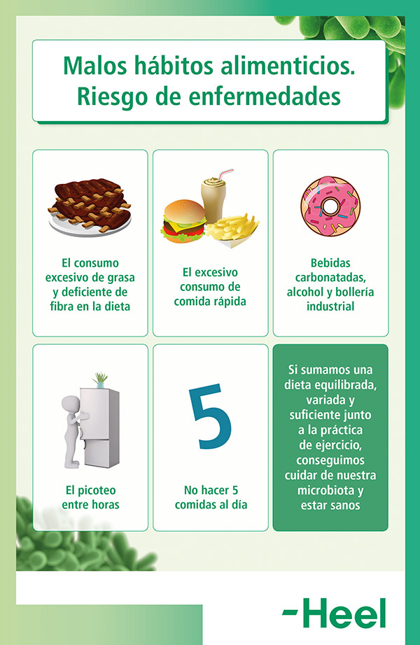 Microbiota y dieta sana - HeelProbiotics - HeelEspaña