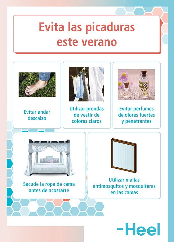 Consejos para aliviar las picaduras de mosquitos - HeelEspaña