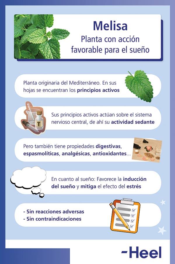 Cómo ayuda la melisa para dormir - HeelEspaña