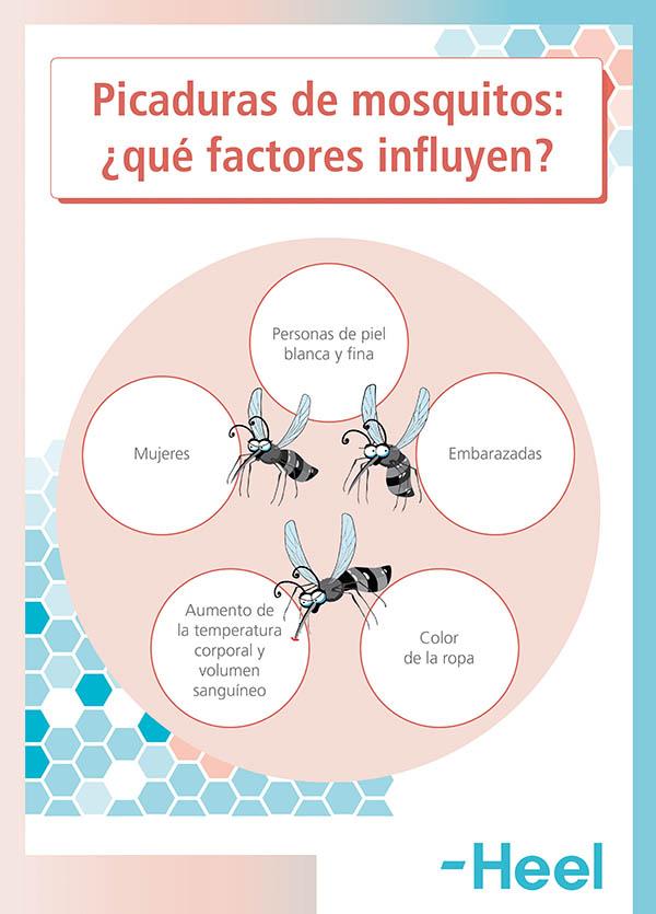 Causas y porqué me pican más los mosquitos que a otras personas - HeelEspaña