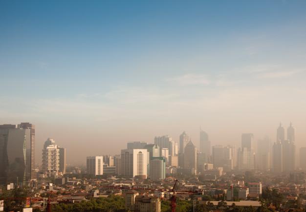 Contaminación ambiental - HeelEspaña