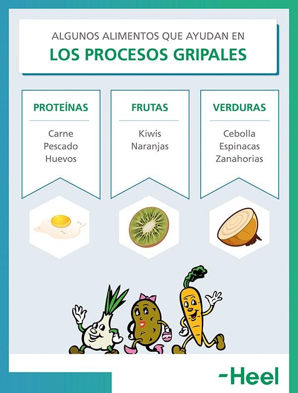 Combatir la gripe con la alimentación - HeelEspaña