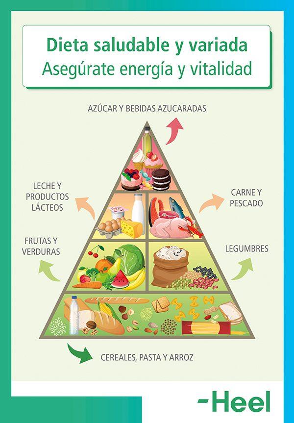 Cuáles son los alimentos que dan energía y vitalidad - HeelEspaña