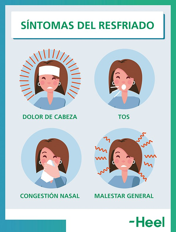 Síntomas típicos del resfriado: ¿igual que los del virus de la gripe? - HeelEspaña