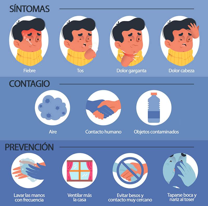 Alimentos que ayudan a combatir la gripe: gripe sintomas contagio prevencion heelespana - HeelEspaña