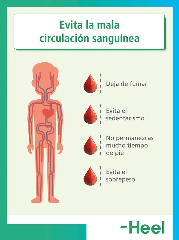 Causas de la mala circulación sanguínea - HeelEspaña