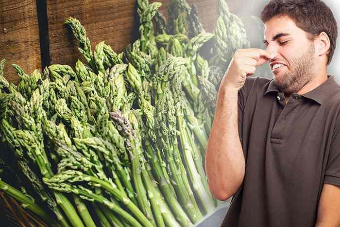 ¿Por qué los espárragos hacen que la orina huela mal?: olor orina esparragos heelespana - HeelEspaña