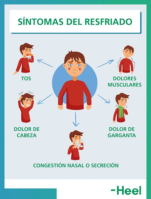 Congestión nasal: uno de los síntomas del resfriado - HeelEspaña