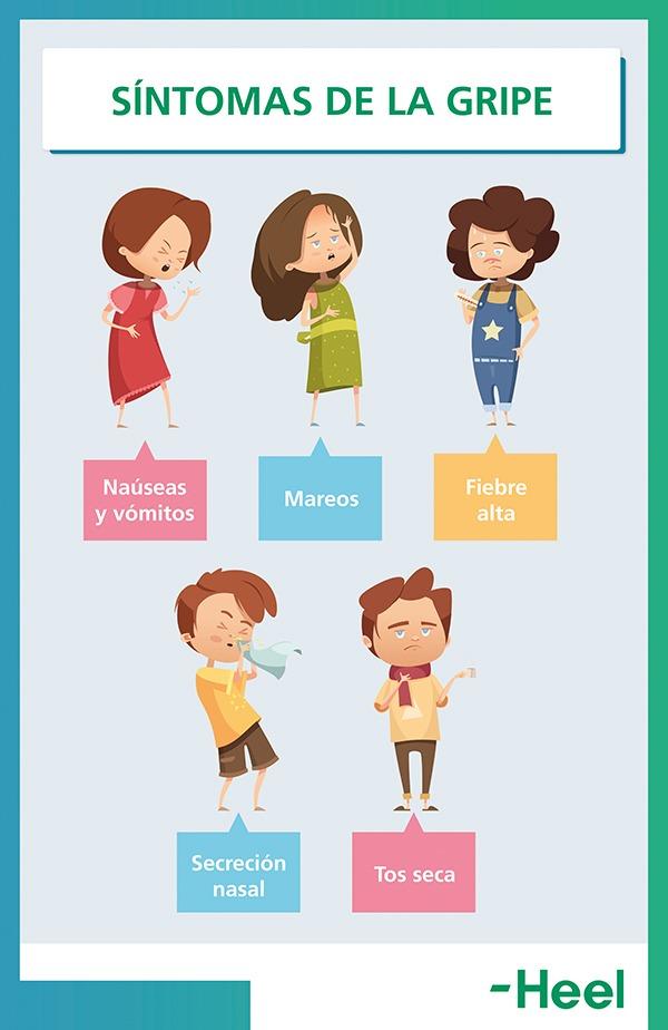 Virus de la gripe: cuáles son sus síntomas - HeelEspaña