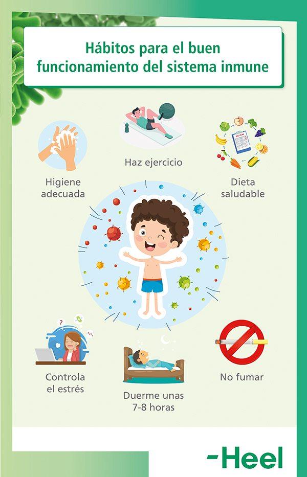 Consejos: cómo fortalecer el sistema inmune - HeelEspaña