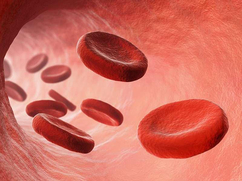 Consecuencias de la mala circulación sanguínea: mala circulacion sanguinea heelespana - HeelEspaña