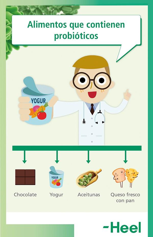 ¿Existen los alimentos probióticos? - HeelProbiotics - HeelEspaña
