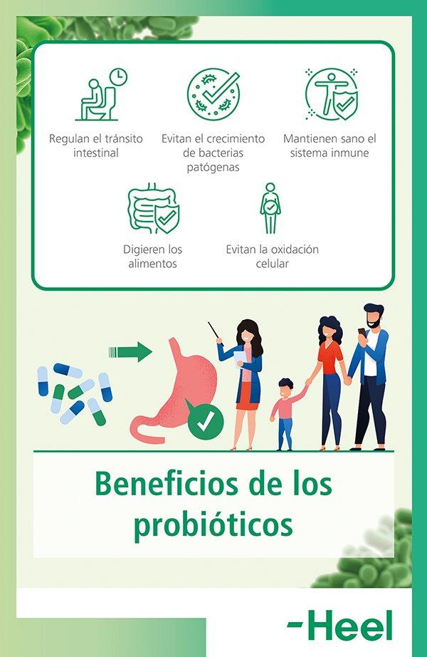 Beneficios de los probióticos - HeelProbiotics - HeelEspaña