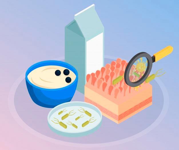 Beneficios de los probióticos en la salud digestiva- HeelEspaña