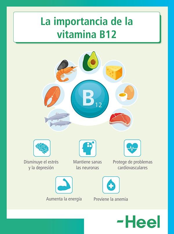 ¿Qué aporta la vitamina B12? - HeelEspaña