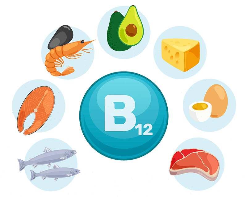 La importancia de la vitamina B12 en veganos: vitamina b12 alimentos heelespana - HeelEspaña