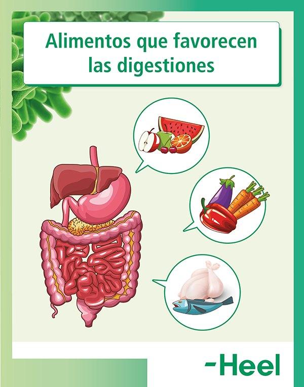 Alimentos que provocan padecer una digestión pesada