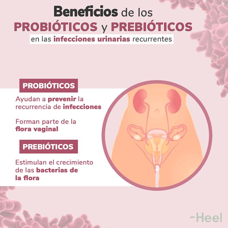 Probióticos para la infección de orina