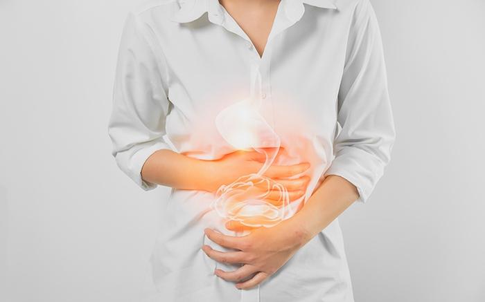 Microbiota intestinal: uso de probióticos