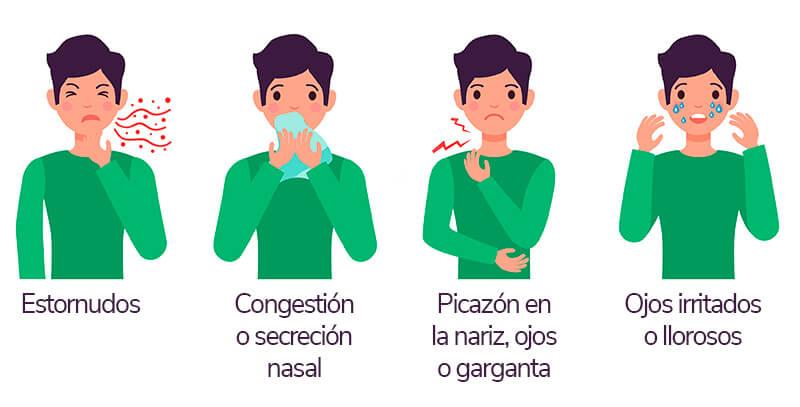 ¿Cuáles son los sintomas de rinitis?