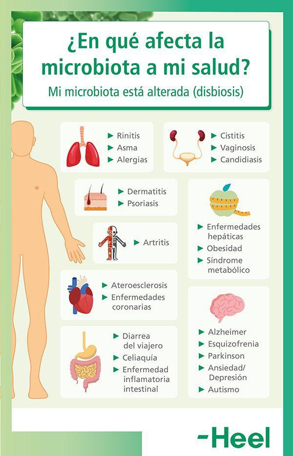 Beneficios de una microbiota intestinal sana para la salud