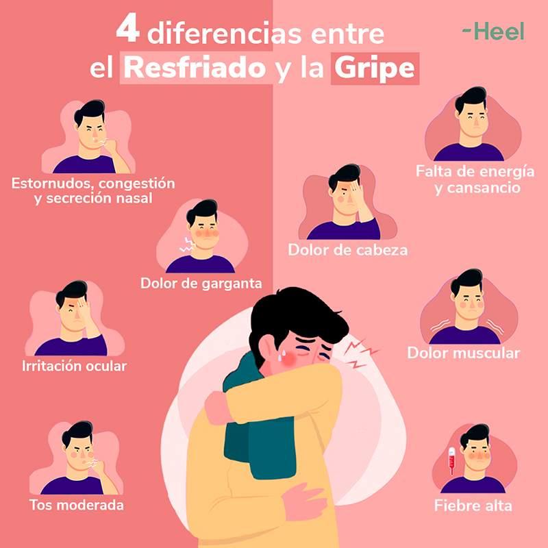 Diferencias entre gripe y resfriado: principales diferencias gripe resfriado - HeelEspaña