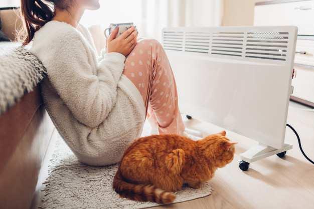 Piel seca con el frío | ¡Evita que las bajas temperaturas maltraten tu piel!: usando calentador casa invierno - HeelEspaña
