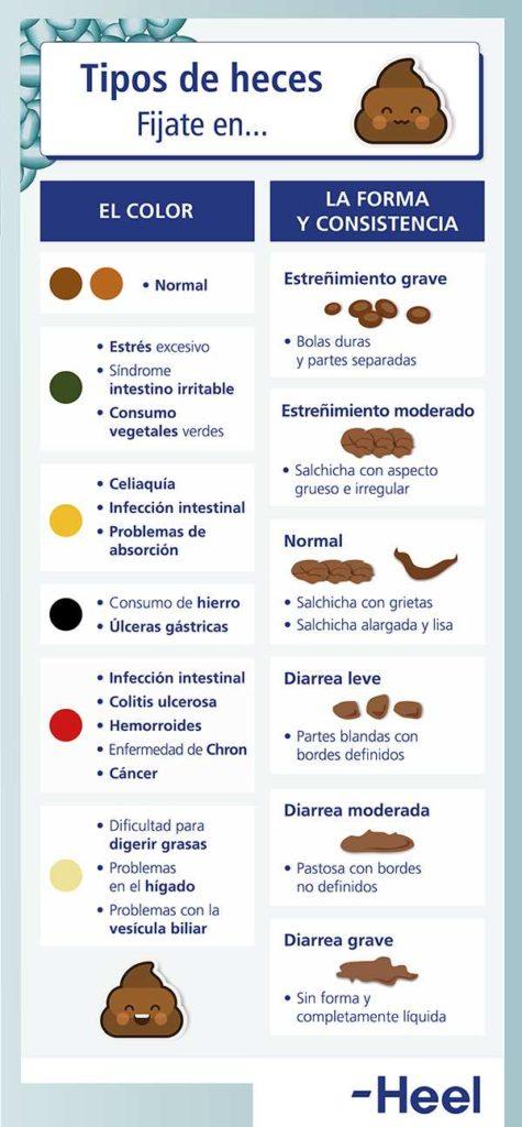 Relación entre forma de las heces y salud