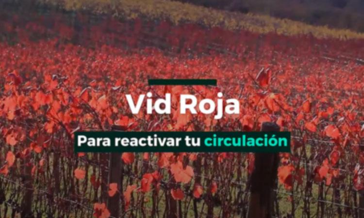 Vid Roja, ¡reactiva la circulación en tus piernas!