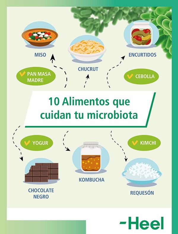En qué nos ayudan los alimentos fermentados
