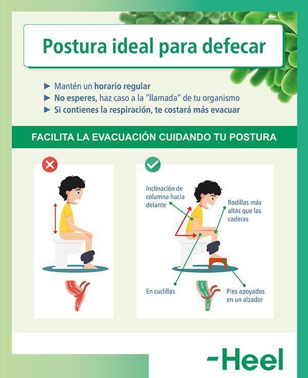 Consejos para evitar el dolor al defecar